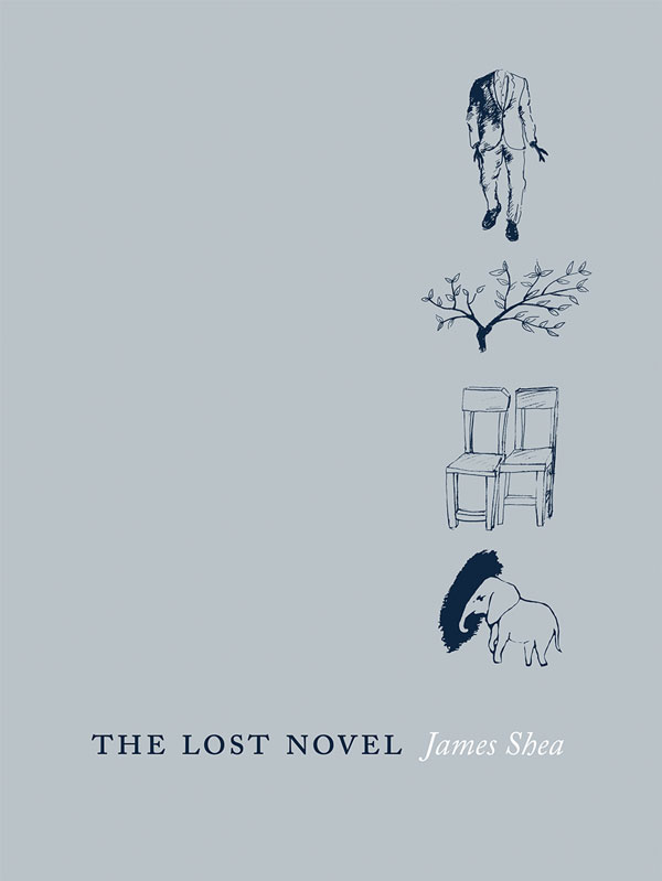 The Lost Novel
